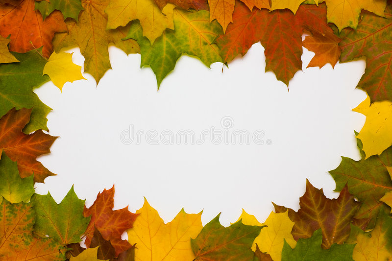 jesień rama opuszczać klonu obrazy stock