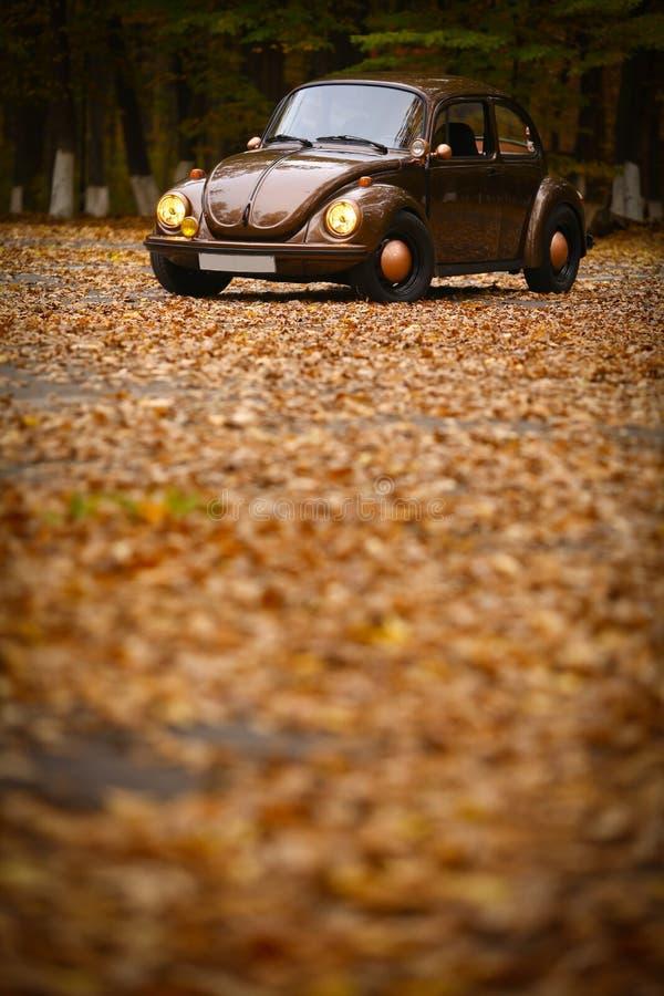 Jesień rocznika samochód obrazy royalty free