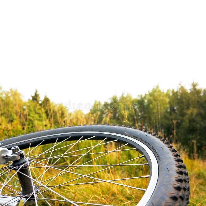 jesień rowerowy odosobniony część zmierzchu wierzchołka koło fotografia royalty free