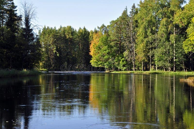 jesień rzeka obrazy stock