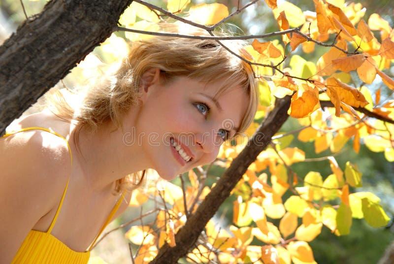 jesień słoneczna grże obrazy royalty free