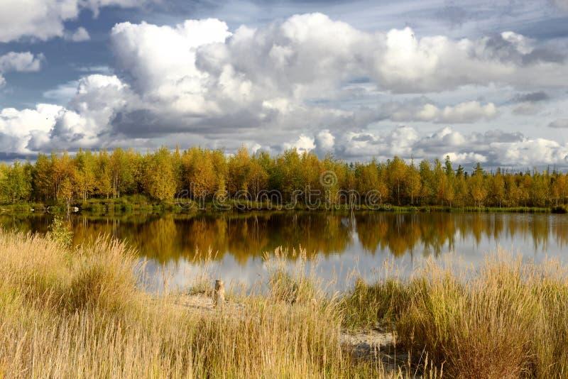 Jesień sceniczny krajobraz północny Rosja obrazy royalty free