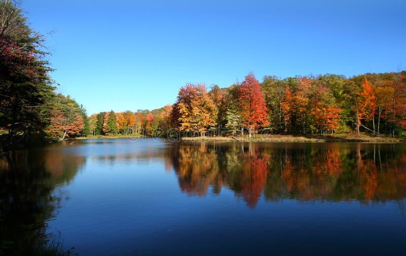 jesień sceniczny krajobrazowy obraz stock