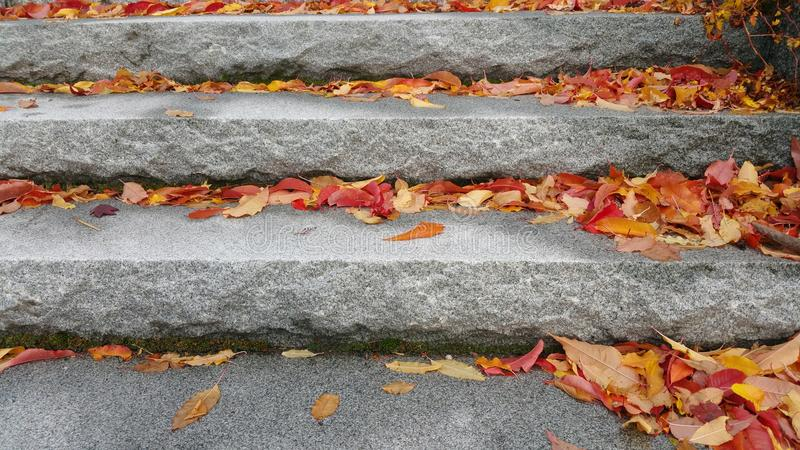 Jesień schodki obrazy royalty free