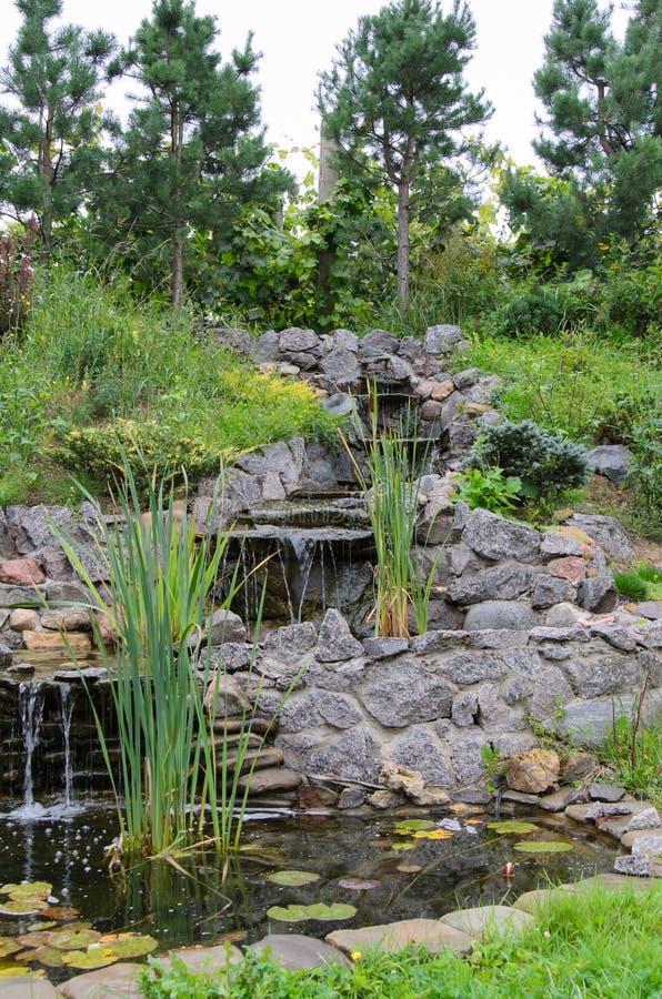 Jesień, schodki w ogródzie fotografia royalty free