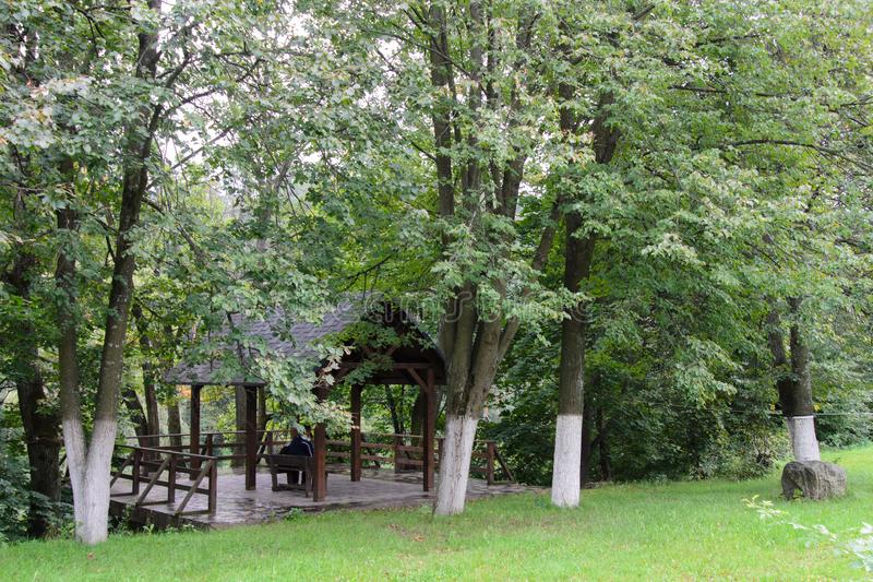 Jesień, schodki w ogródzie zdjęcie royalty free