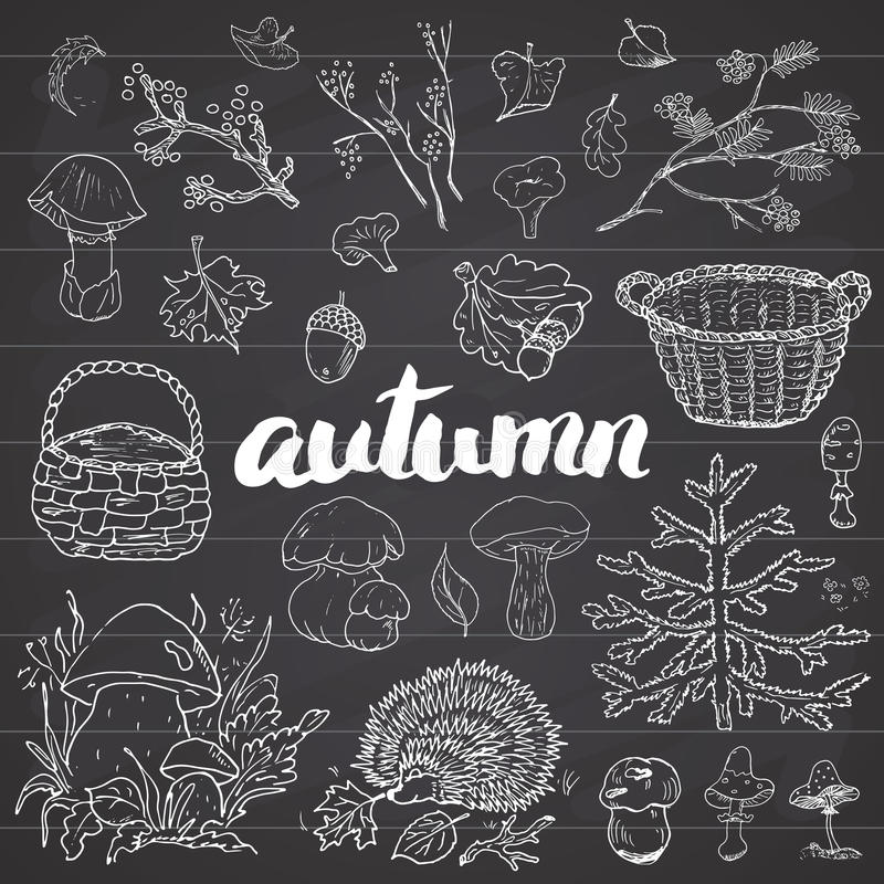 Jesień sezonu set Ręka rysująca literowanie wektoru ilustracja i doodles ilustracji