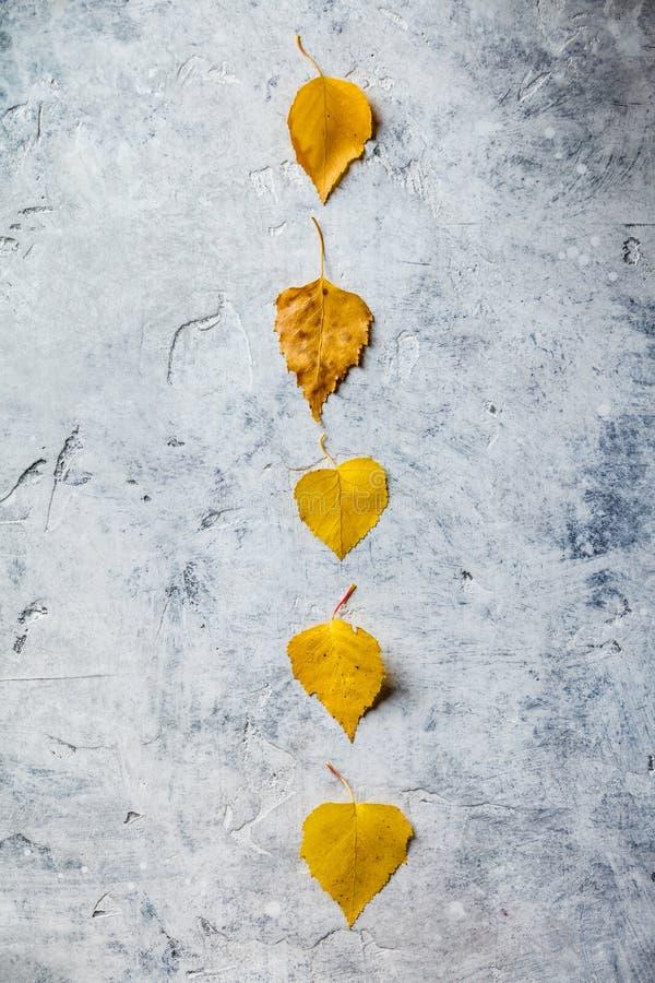 Jesień skład robić wysuszeni liście obrazy royalty free