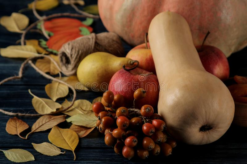 Jesień skład z bani, jesieni owoc z i zdjęcie stock