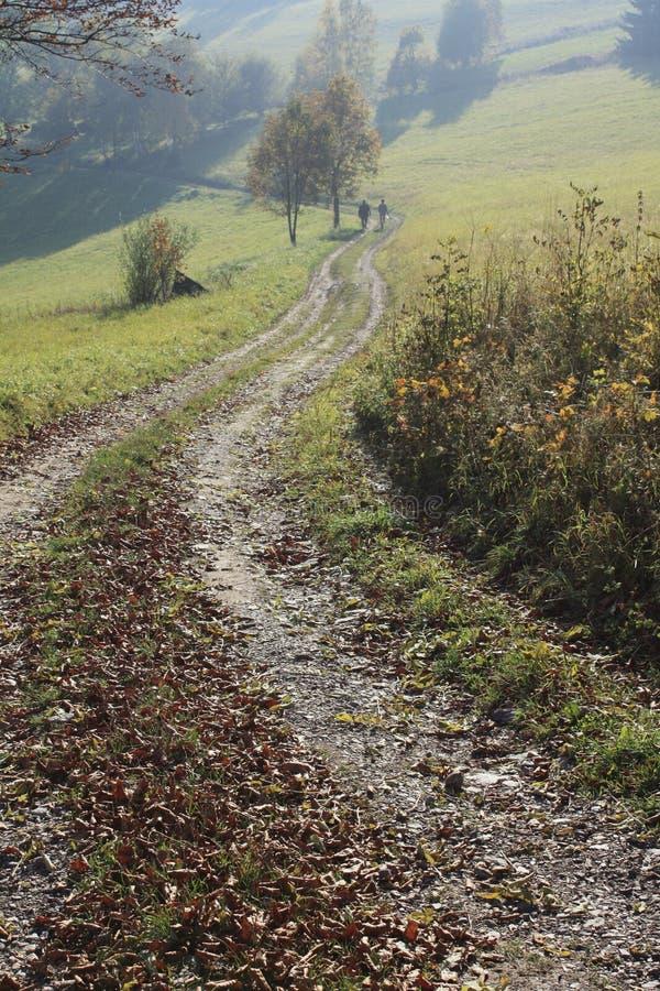 jesień spacer obraz stock