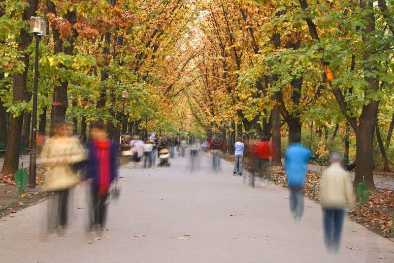 jesień spacer zdjęcia stock