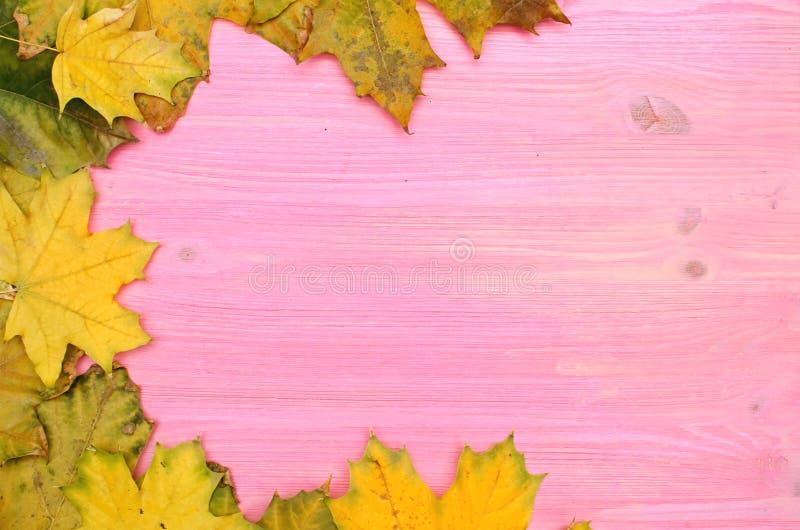 Jesień spadać liście na drewnianej deski powierzchni tle z kopii przestrzenią zdjęcie royalty free