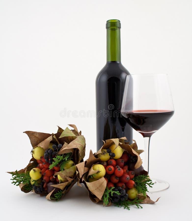 jesień suszył owocowego dzikiego wino - fotografia stock