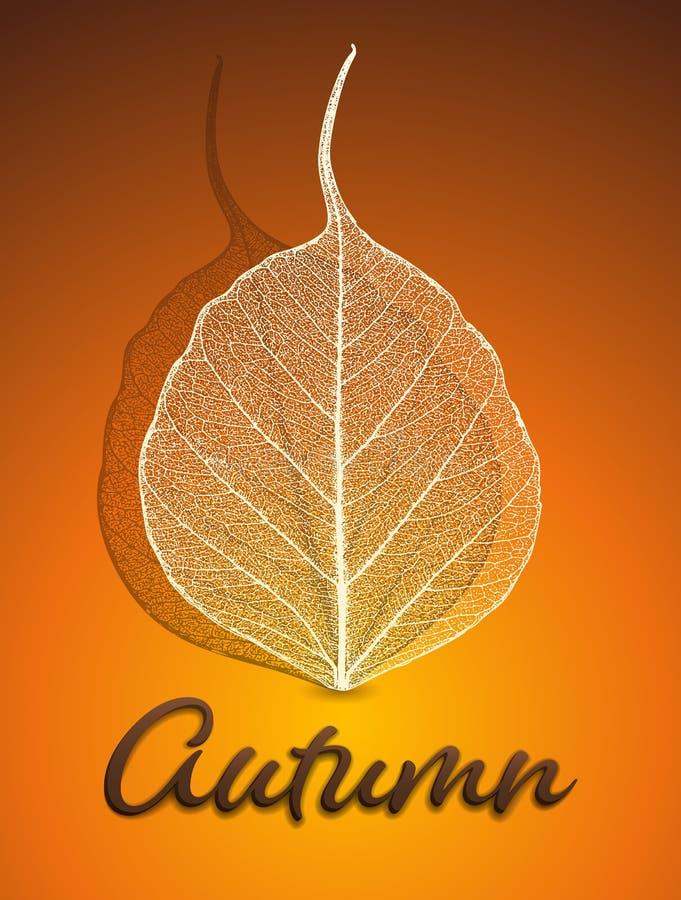 jesień tła eps zawierać wektor ilustracji