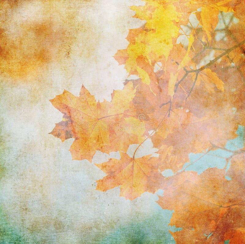 jesień tła grunge liść ilustracja wektor