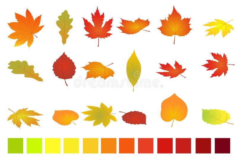 jesień tła kolorowi odosobneni liść biały Płaska i isometric wektorowa ilustracja Jesień liście ustawiają prostego royalty ilustracja