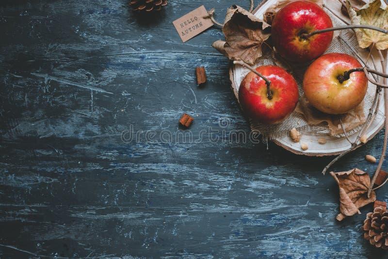 jesień tła kopii przestrzeń Wyśmienicie jesień karmelu jabłka z jesieni dekoracją, odgórny widok obrazy stock