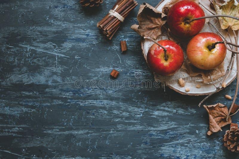 jesień tła kopii przestrzeń Wyśmienicie jesień karmelu jabłka z jesieni dekoracją, odgórny widok fotografia stock
