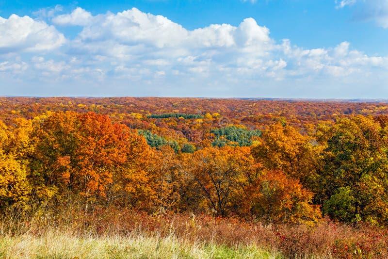 Jesień Vista zdjęcie royalty free