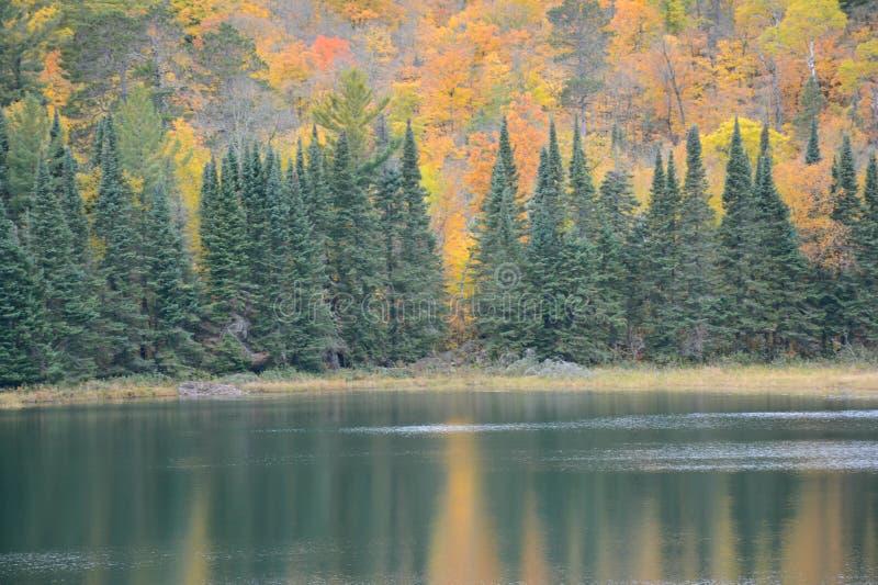 Jesień Vista Na Josephine jeziorze - Itasca stanu park fotografia stock