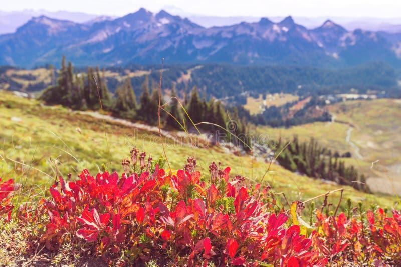 Jesień w górach zdjęcie royalty free