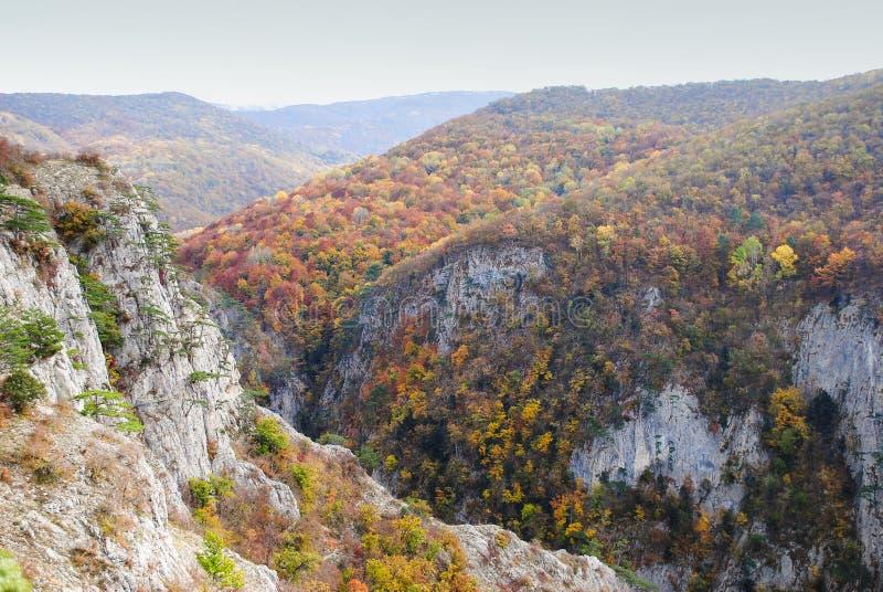 Jesień w górach fotografia royalty free