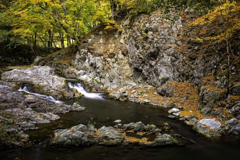 Jesień w halnym lesie z rzeką i watefalls obrazy royalty free