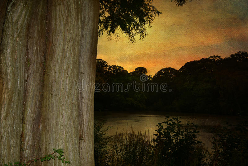 Jesień W Hampstead London UK Anglia obrazy stock