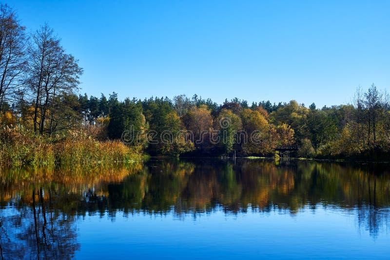 Jesień w lasowej pobliskiej rzece fotografia royalty free