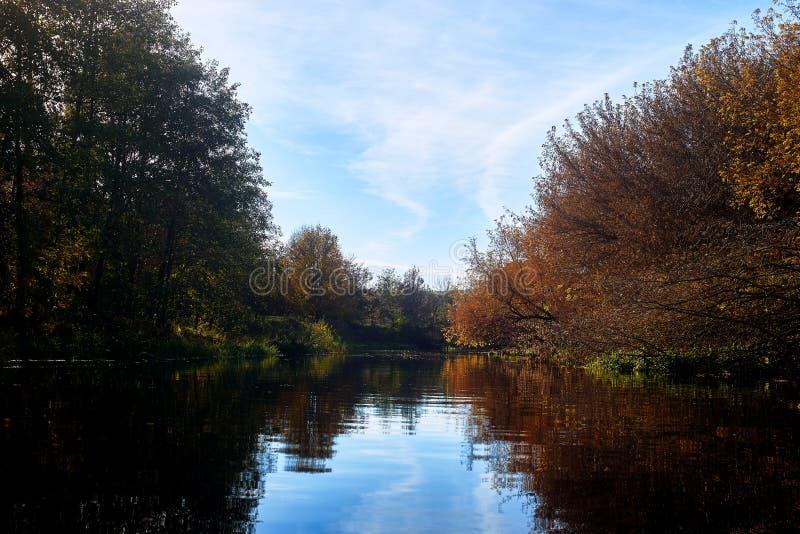 Jesień w lasowej pobliskiej rzece zdjęcia stock