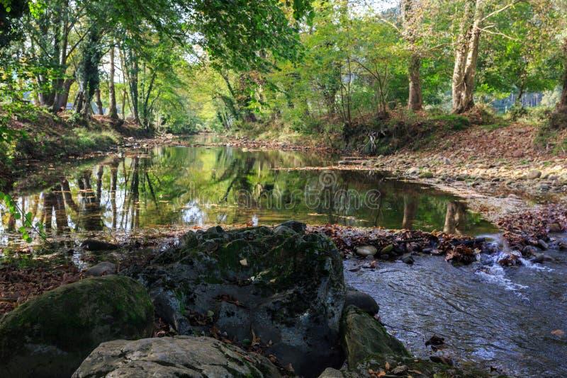 Jesień w lesie z odbiciami w rzece, Guriezo, Cantabria, Hiszpania fotografia stock
