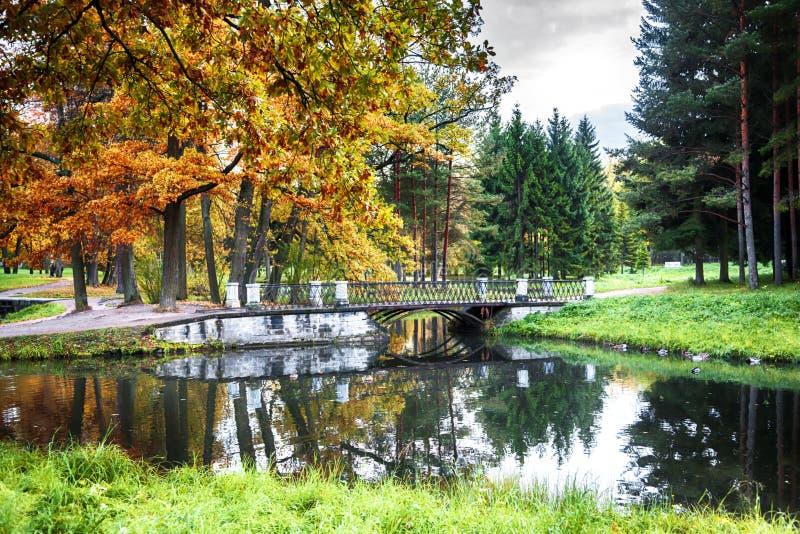 Jesień w miasto parku obraz royalty free