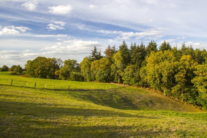 Jesień w Niskim Rhine regionie, Niemcy zdjęcie stock