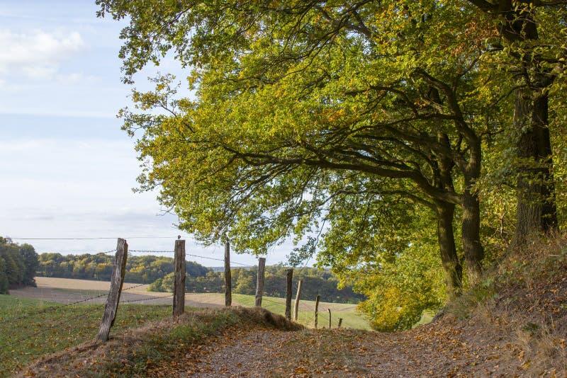 Jesień w Niskim Rhine regionie, Niemcy obraz stock