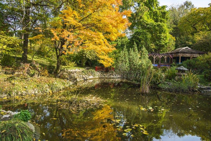 Jesień w ogródzie botanicznym Cluj, Rumunia zdjęcia stock