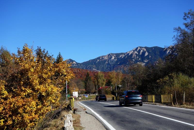 Jesień w Październiku na halnych drogach 1 fotografia stock