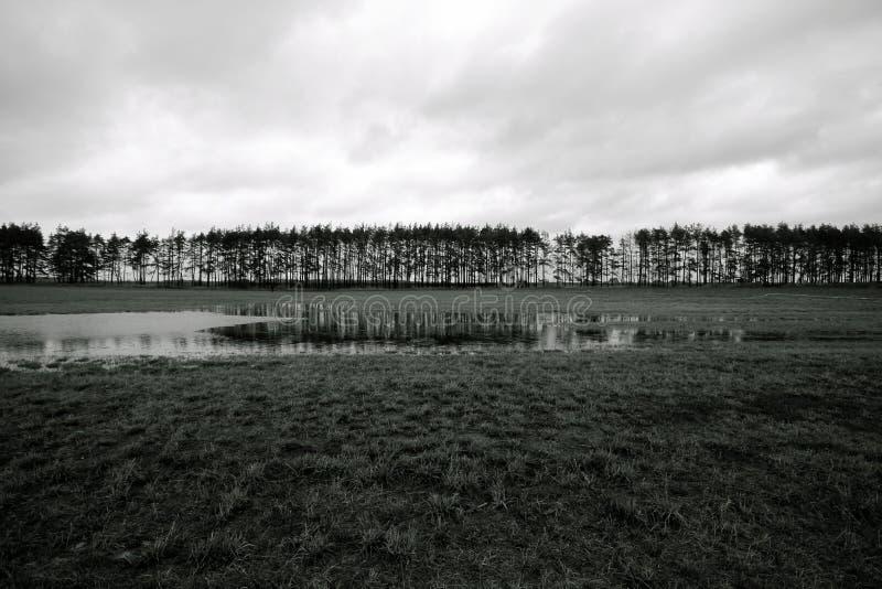 Jesień w polu Krajobraz zdjęcie royalty free