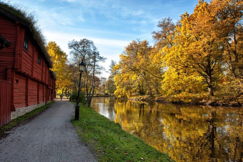 Jesień w Scandinavia obrazy royalty free