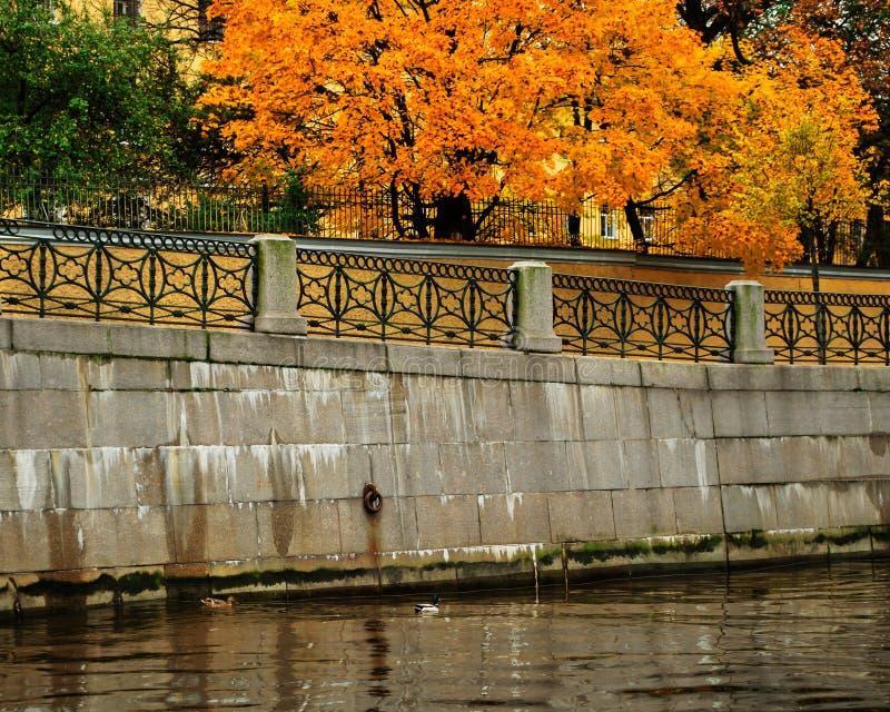 Jesień w St Petersburg zdjęcie royalty free