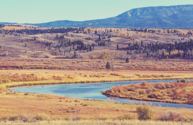 Jesień w Uroczystym Teton obrazy stock