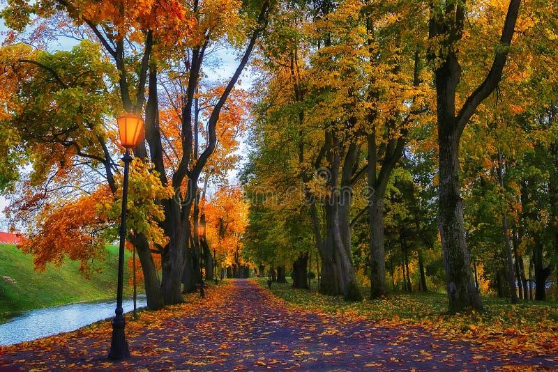 Jesień w wieczór parku Scenerii jesieni tło Kolorowy spadek żywy obrazy stock