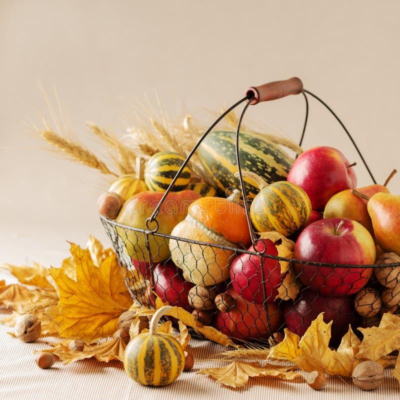 Jesień wakacje dziękczynienie Wciąż życie z banią i jabłkami, obrazy royalty free