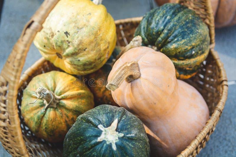 Jesień wieśniaka wciąż życie - różne colourful banie w koszykowej, selekcyjnej ostrości, obrazy stock