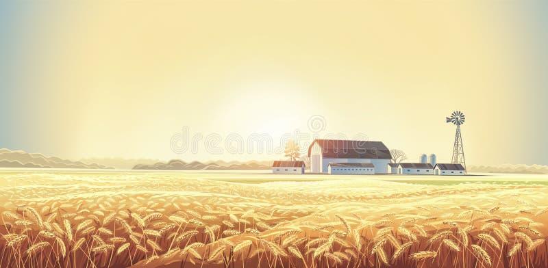 Jesień wiejski krajobraz z pszenicznym polem ilustracji