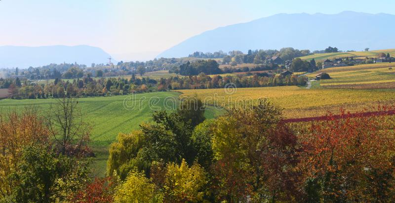 Jesień winnicy krajobraz fotografia stock