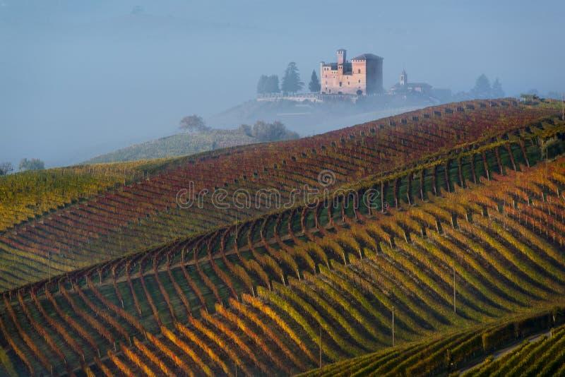 Jesień winnicy na wzgórzach zdjęcia stock