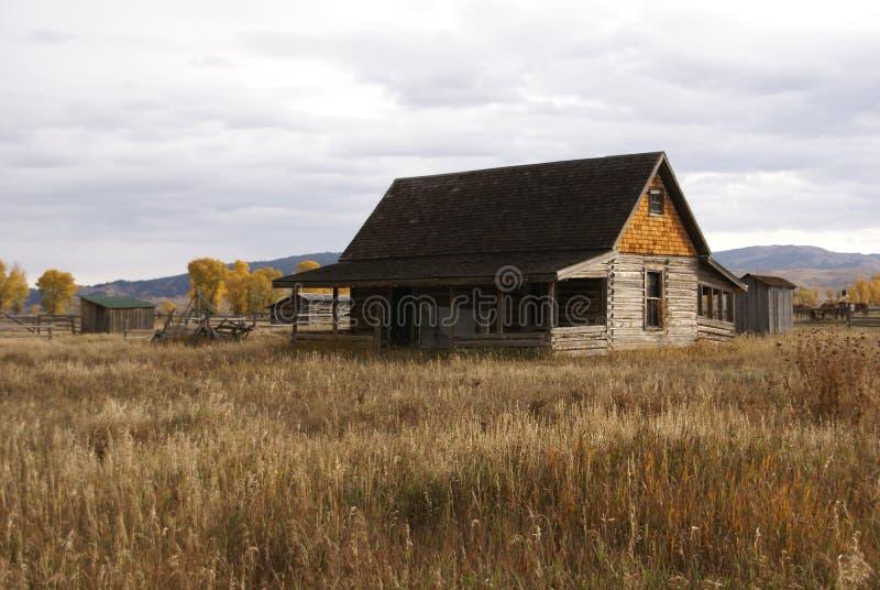 Jesień złoci drzewa i starzy rolni budynki, obrazy royalty free