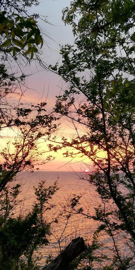 Jesień zmierzchu seascape w menchiach i purpurach barwi na gałąź drzewa t?a jaskrawy pi?kny fotografia royalty free