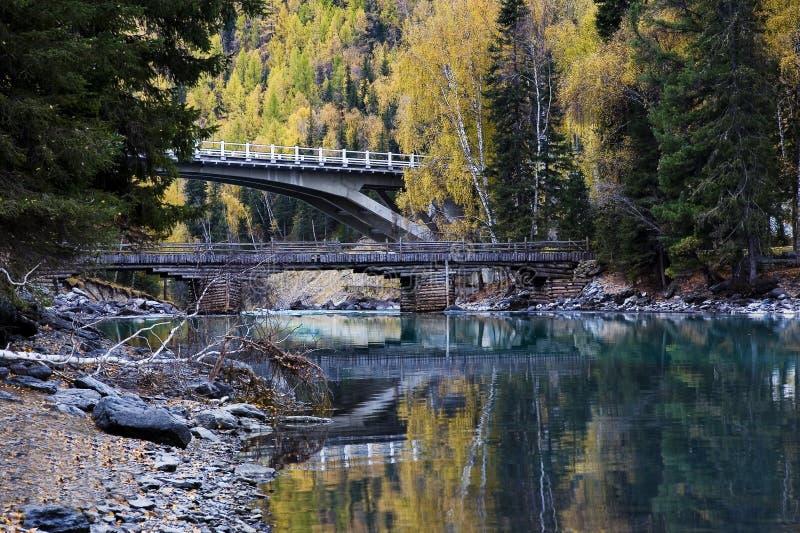 Download Jesień obraz stock. Obraz złożonej z greenbacks, lesisty - 13337607