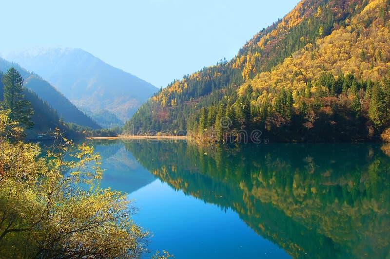 Download Jesień Drzewo Jeziorny Halny Zdjęcie Stock - Obraz złożonej z jesienny, złoto: 13325196